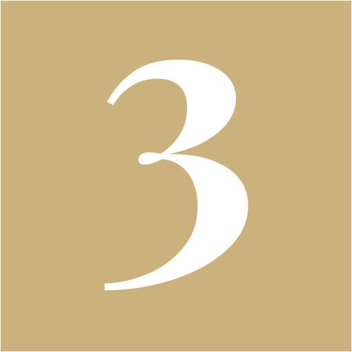Badge 3